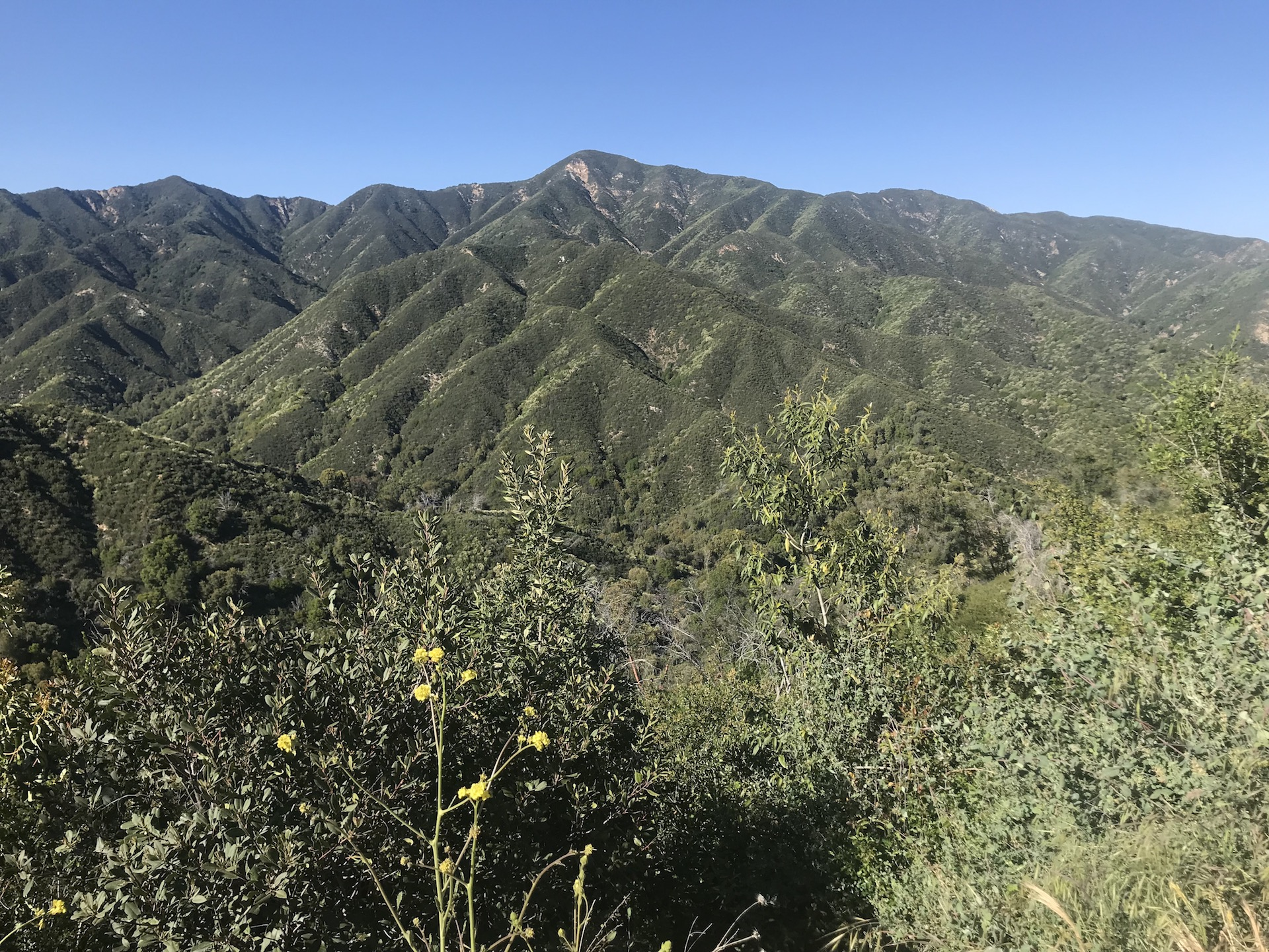 The view along Nacimiento Fergusson road